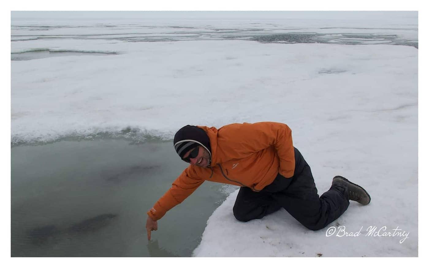 beaufort sea is frozen near Prudhoe Bay