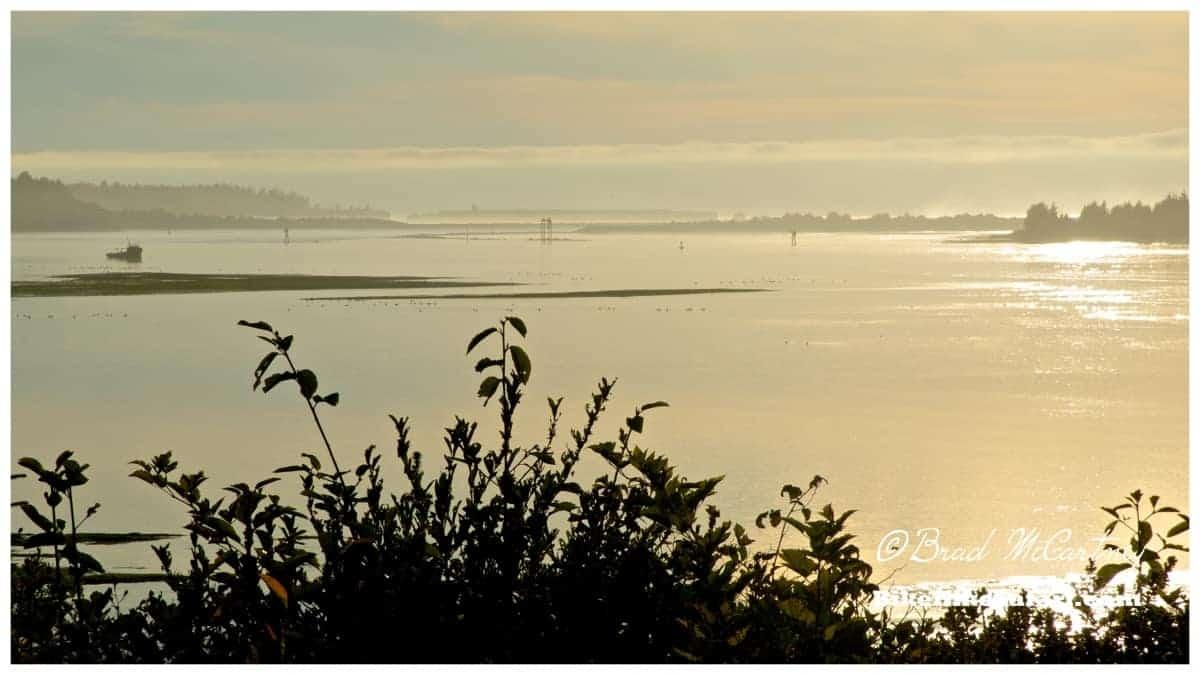 The late evening sun on the bay near Charleston