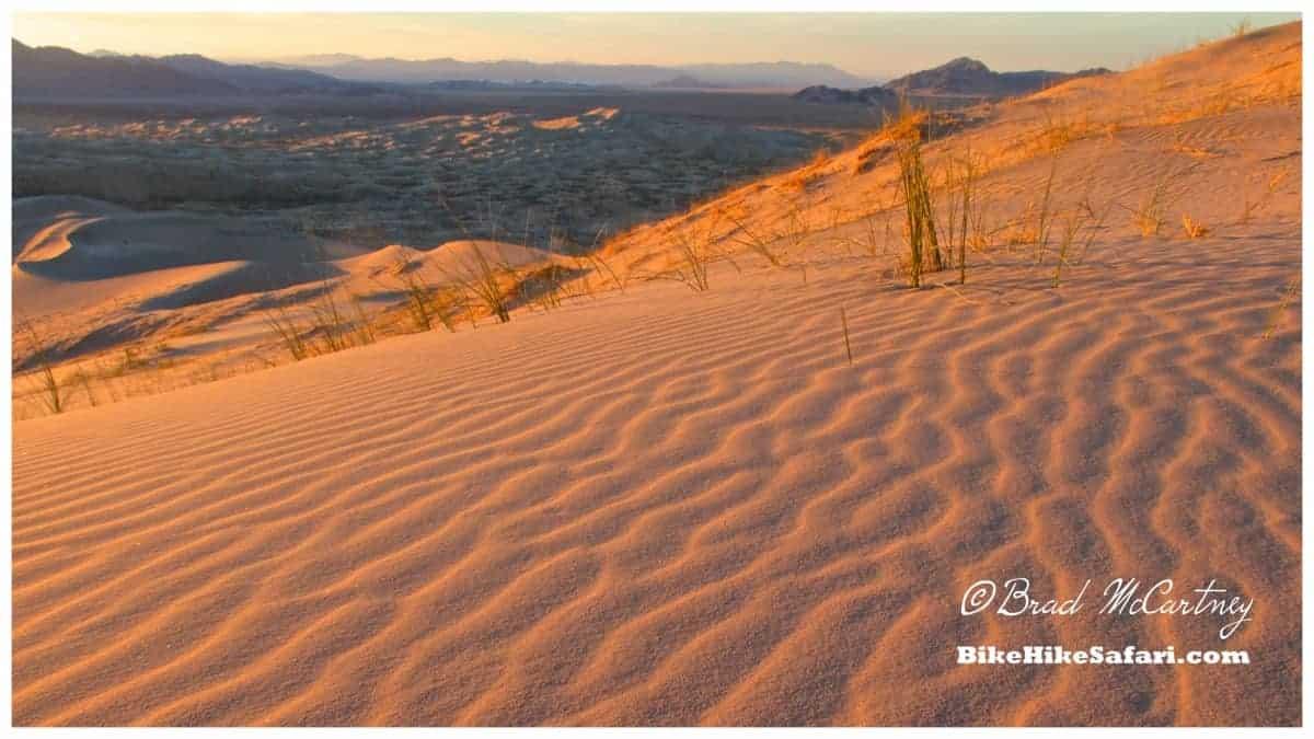 Setting sun in the Kelso dunes of the Mojave Desert