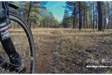 cycling the arizona trail