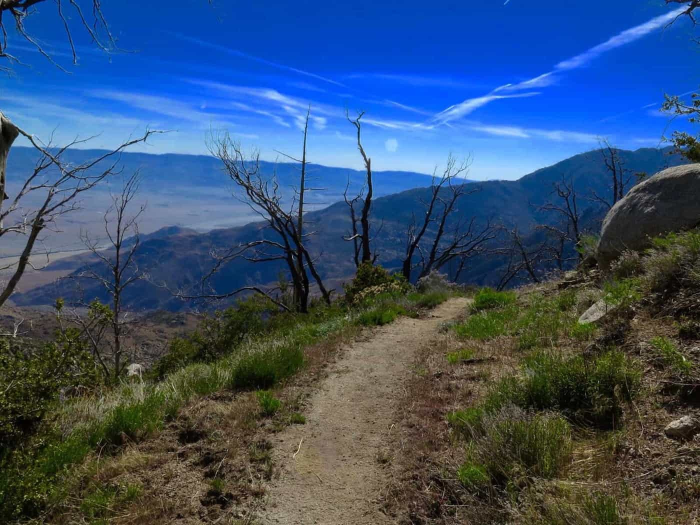 Descending from Mt San Jacinto PCT