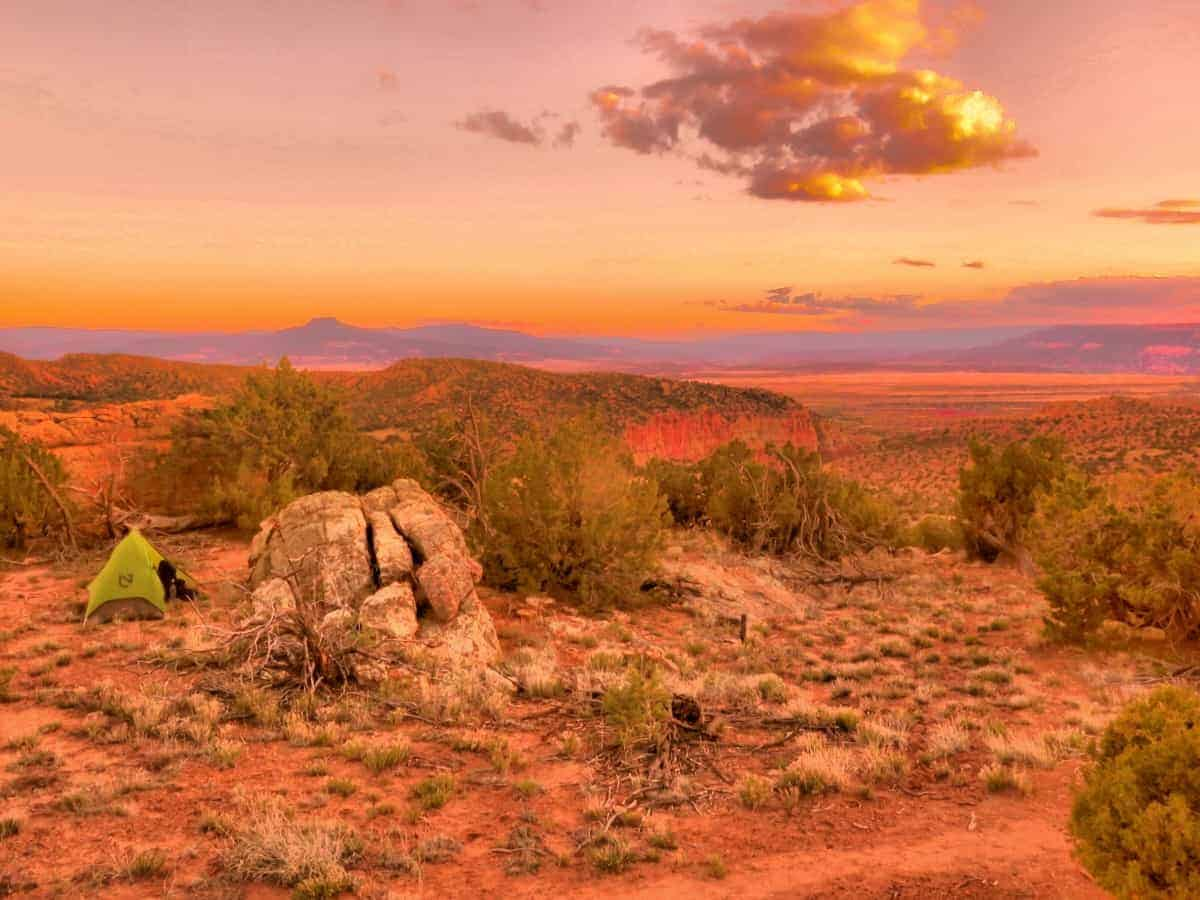 CDT New Mexico