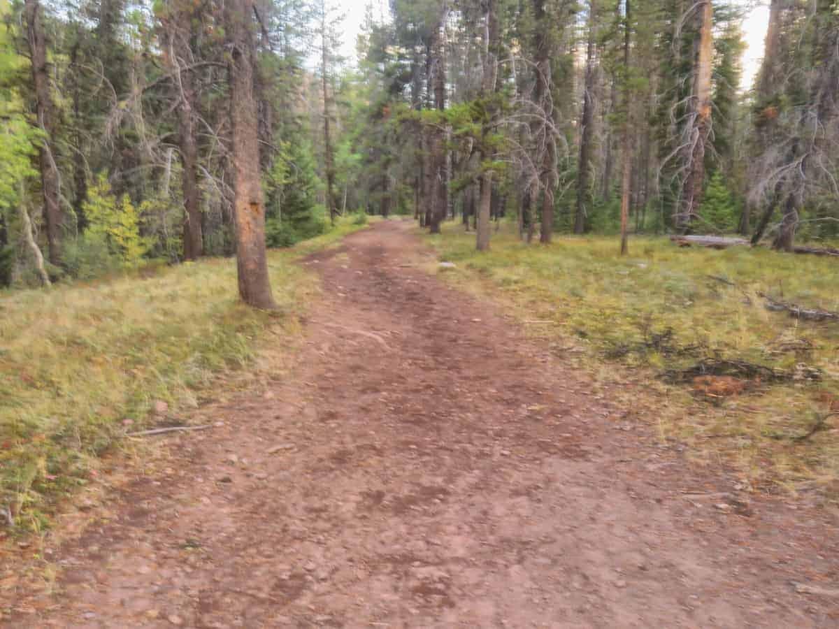 Bob Marshall Wilderness hiking trail