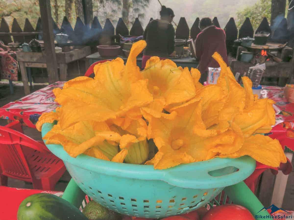 Flor de Calabasa