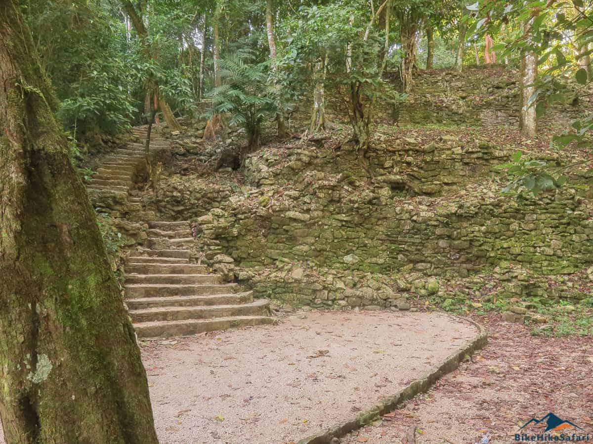 Remote Jungle trails at Palenque
