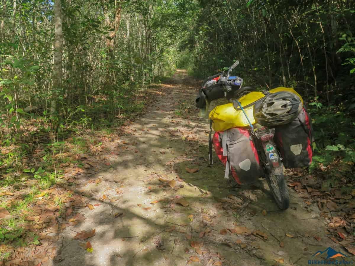 El Zotz Tikal Trail