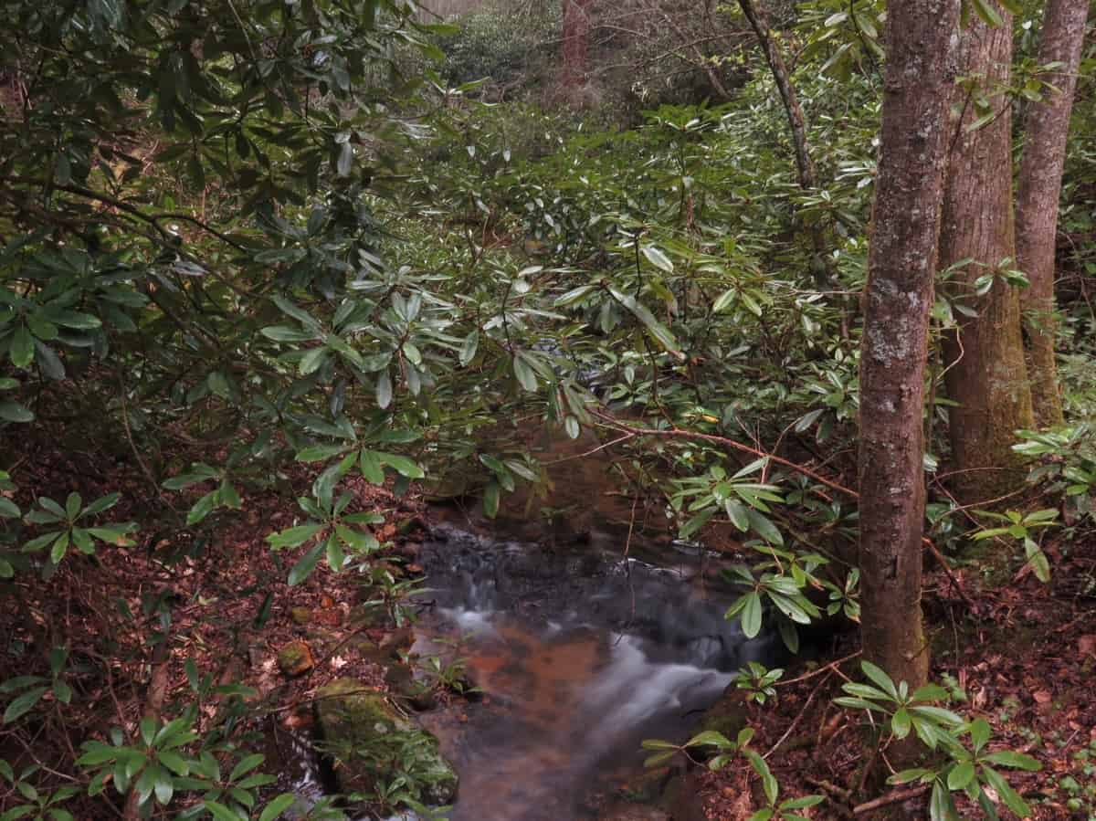 appalachian trail day 1