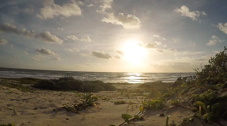 sian-kaan-biosphere-reserve-beach