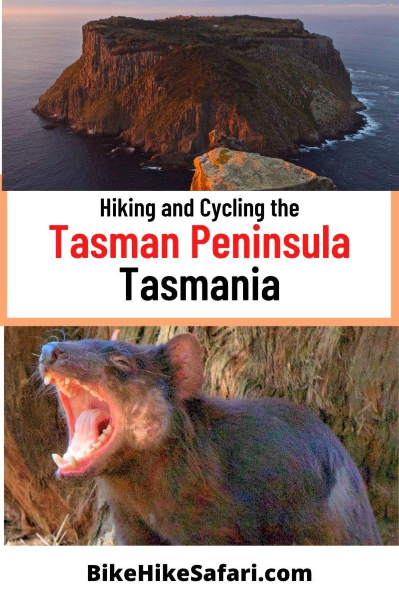 Hiking and Cycling the Tasman Peninsula