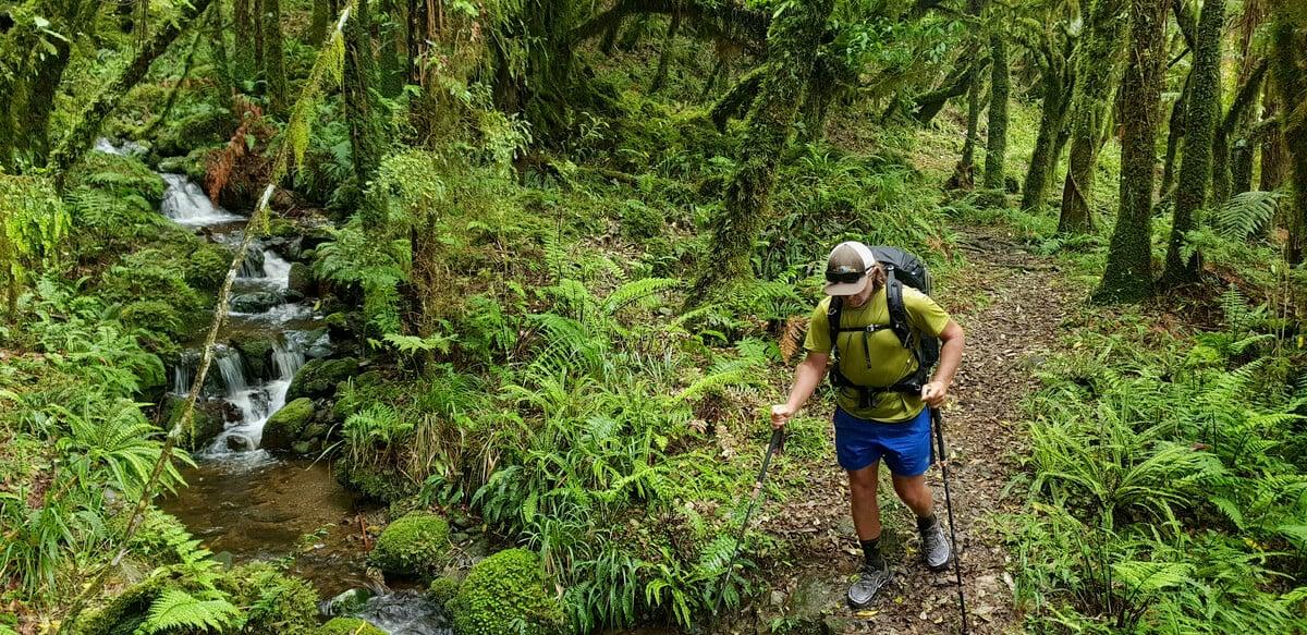 Best Trail Runners for thru hiking