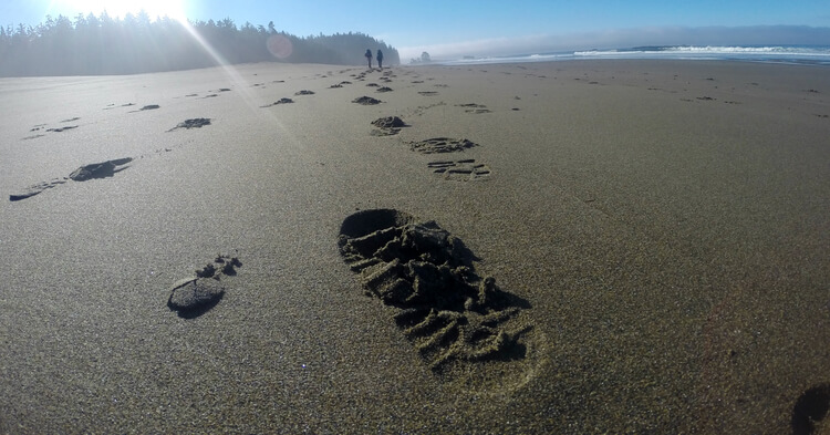 Footprints in the sand show  the hiking boots tread